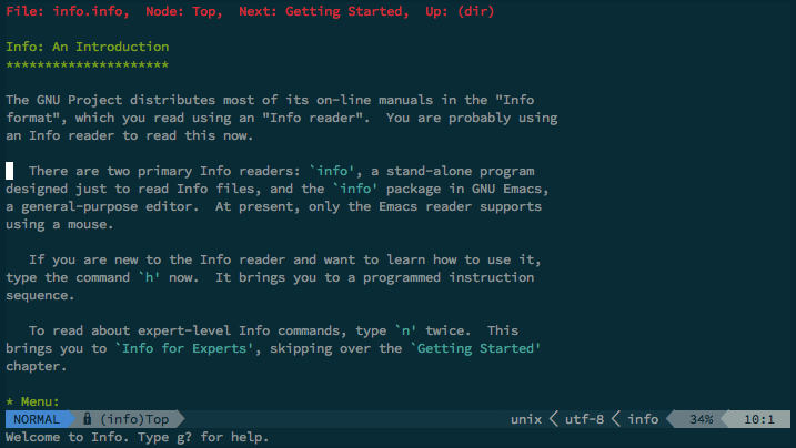 info.vim screenshot
